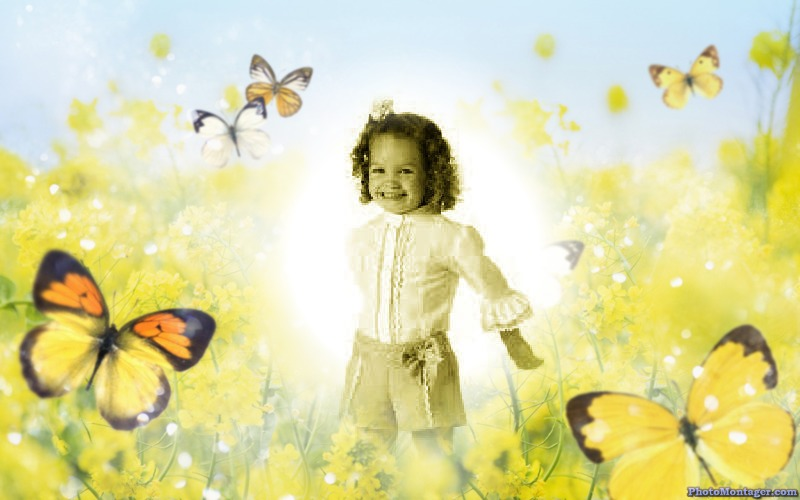 Tu foto en un fondo de mariposas