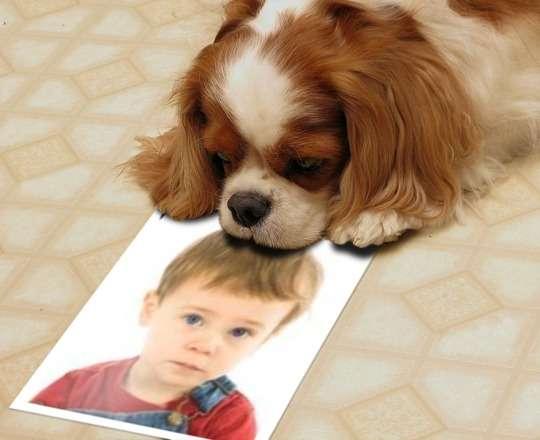 Tu foto junto a un perrito